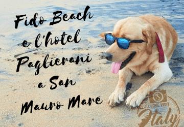 vacanze con il cane dove